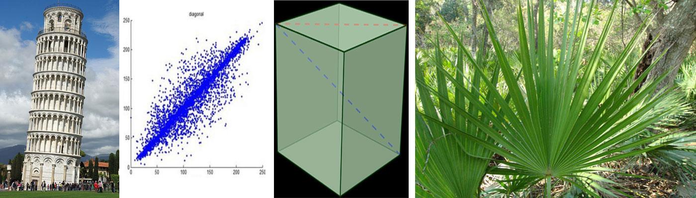 Repertoire-Diagonals-2